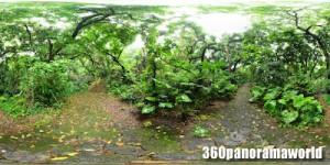 120422_sueyoshi_park_04s
