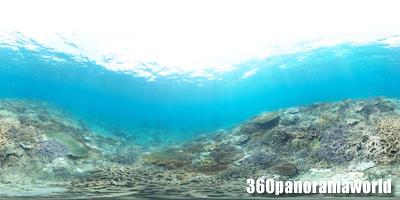 130415_coralgarden_01s