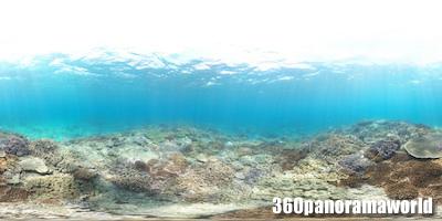 130415_coralgarden_02xs