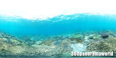 130415_coralgarden_03s
