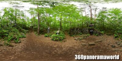 130606_yoshidatainai_01s