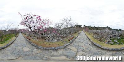 140120_nakijin_01s