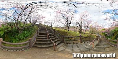 140123_nago_01s