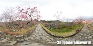 140123_nakijin_01s