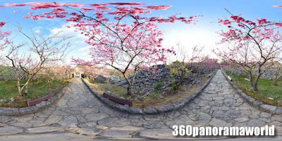 140127_nakijin_03s