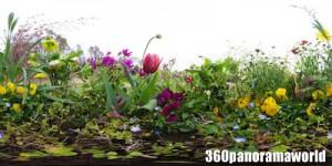 140422_flowers