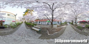 150402_takarazuka_03s